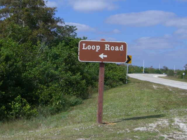 02_loop_road_everglades